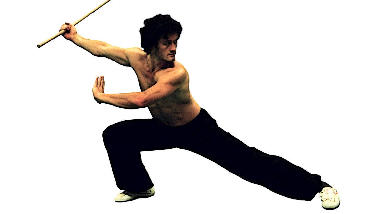 Bild eines Kung Fu-Kämpfers