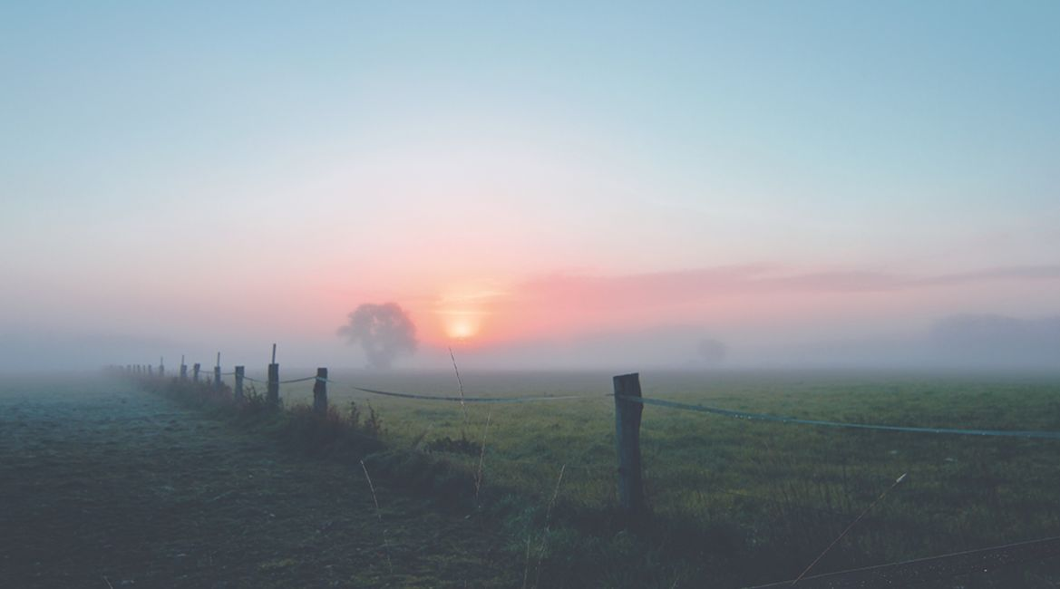 Bild eines Sonnenaufgangs